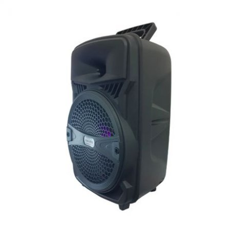 Boxa Bluetooth Portabila Ailiang A81, microfon cadou, radio, MP3, AUX, USB